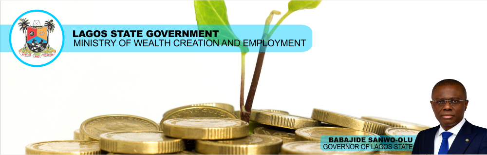 Ministry Of Wealth Creation And Employment – Lagos State Government